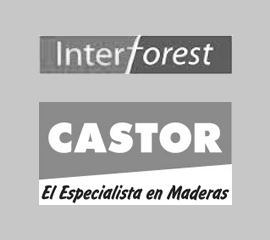 castor_e_interforest
